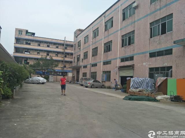松岗江边新出楼上标准重工业厂房红本厂房出租-图2