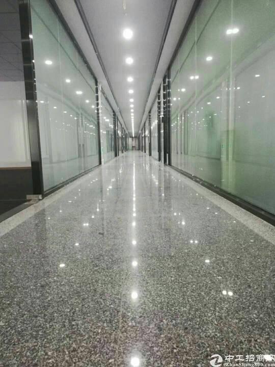 11号线(会展中心)地铁口,物业直租带精装158平