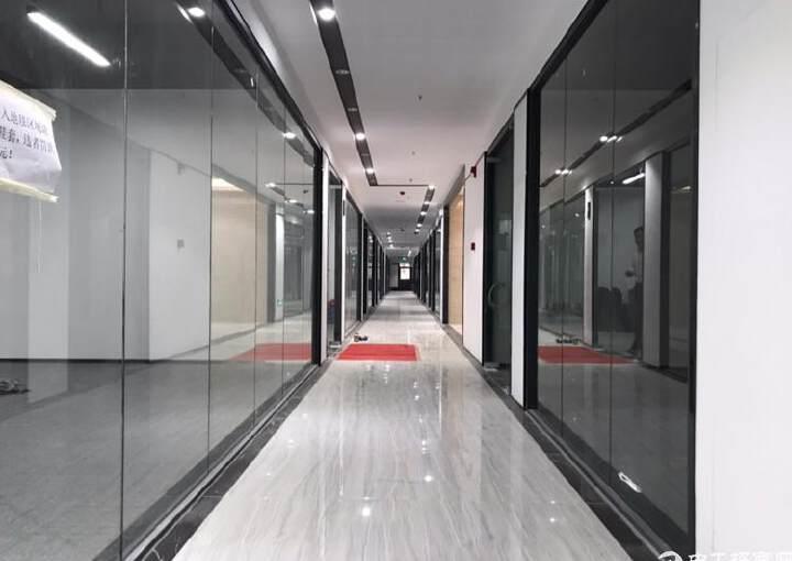 广兴源互联网智慧园74平精装办公楼,拎包入住图片1