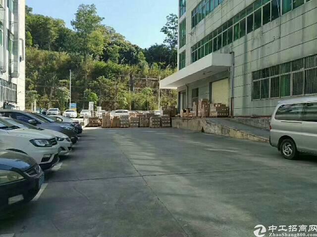 石岩汽车站原房东无公摊一楼整层2200平方厂房出租
