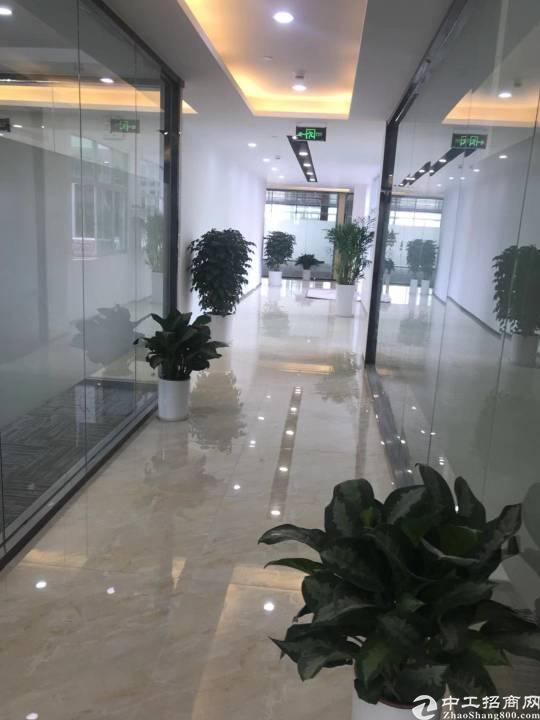 石岩主干道边上新出精装修办公室500平方招租