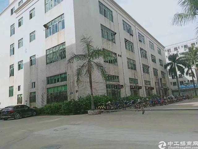 福永和平整栋7800平方带装修厂房出租