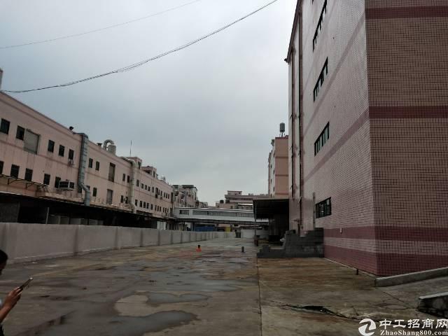 平湖华南城新出独院8000平方红本厂房-图4