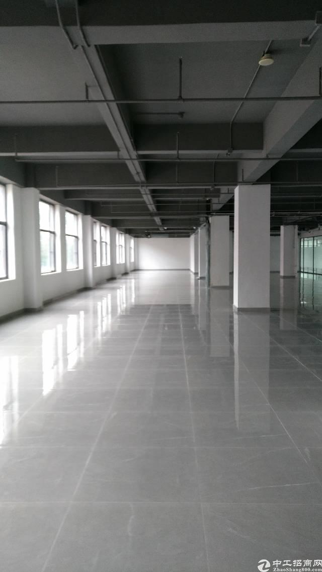 龙岗南联爱南路旁大型商务大厦写字楼5200平招租