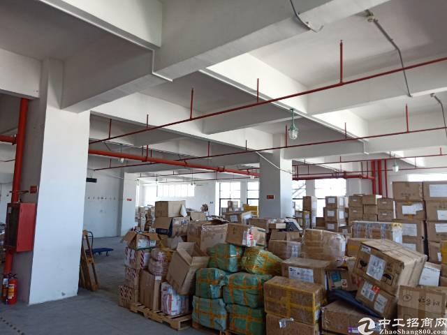 公明南光高速出口新出楼上4000平方200平起分租-图2