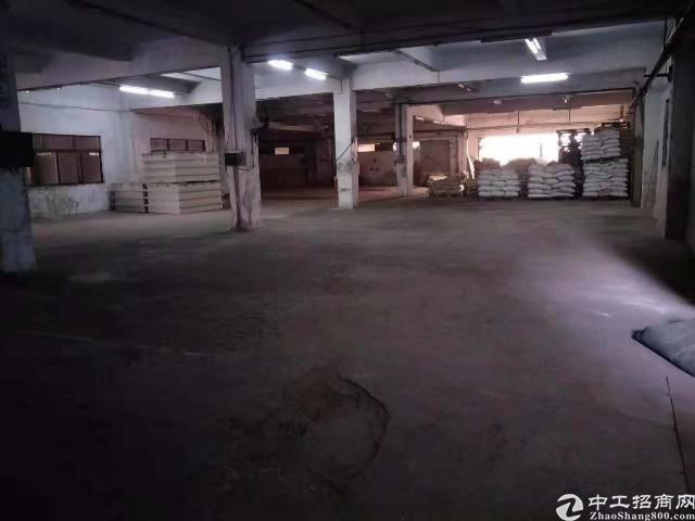 樟木头镇樟洋管理区原房东标准厂房一楼1000平,无公摊