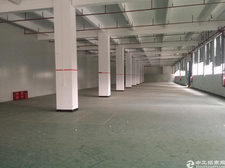 厦岗原房东一楼4500平方米厂房