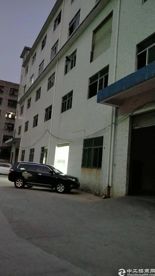 西乡固戍一路置富广场对面5000平独门独院标准厂房出租