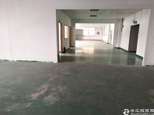 石岩新出带精装修厂房600平招租-图2