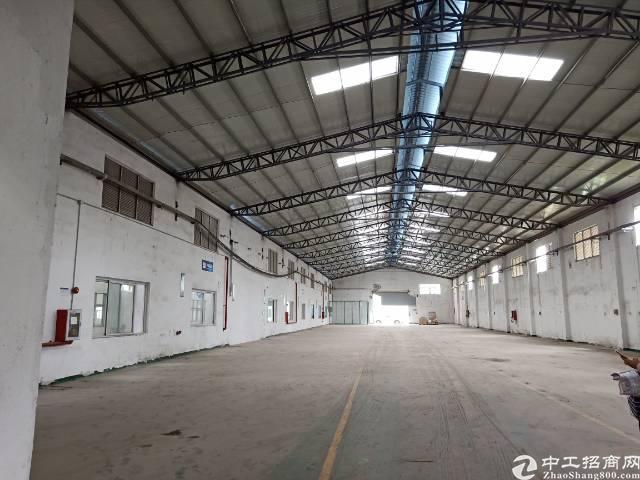 公明下村原房东钢构厂房出租9800平方实际面积分租700起分