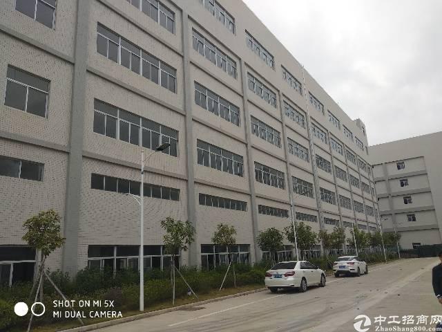 惠州市沥林镇新出独院厂房
