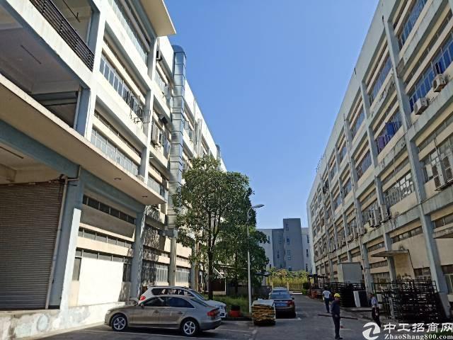 公明南光高速出口新出楼上4000平方200平起分租-图3