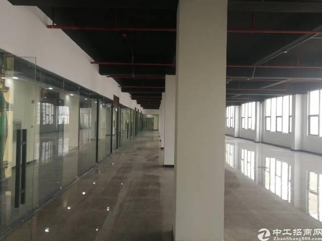 布吉丹竹头地铁站附近新出带装修8000平写字楼出租可分租