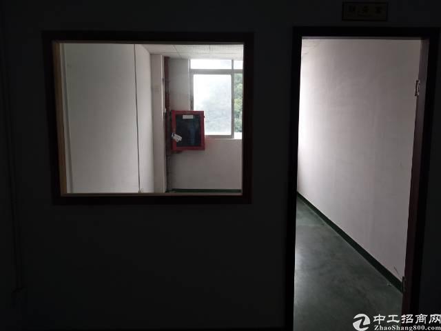 石岩新出带精装修厂房600平招租-图6