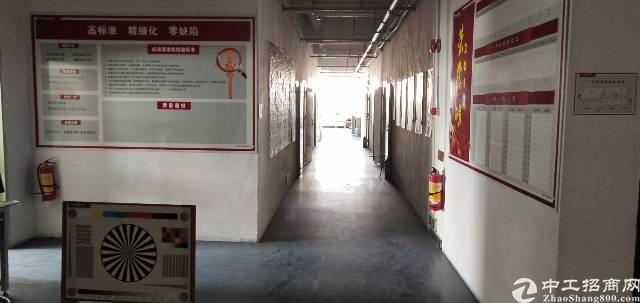 光明高新区新出楼上带装修厂房不要转让费1350平-图4