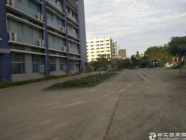 松岗双高速出口附近新出楼上无尘车间厂房2000平原房东直租