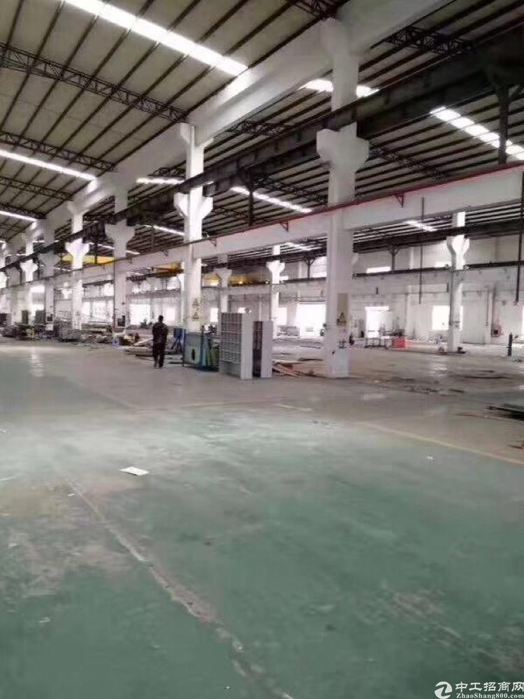 [松岗厂房]松岗南光高速出口独门独院滴水12米钢构厂房162