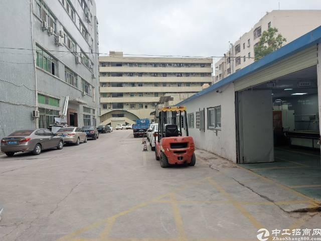 深圳石岩松柏路大型成熟工业园