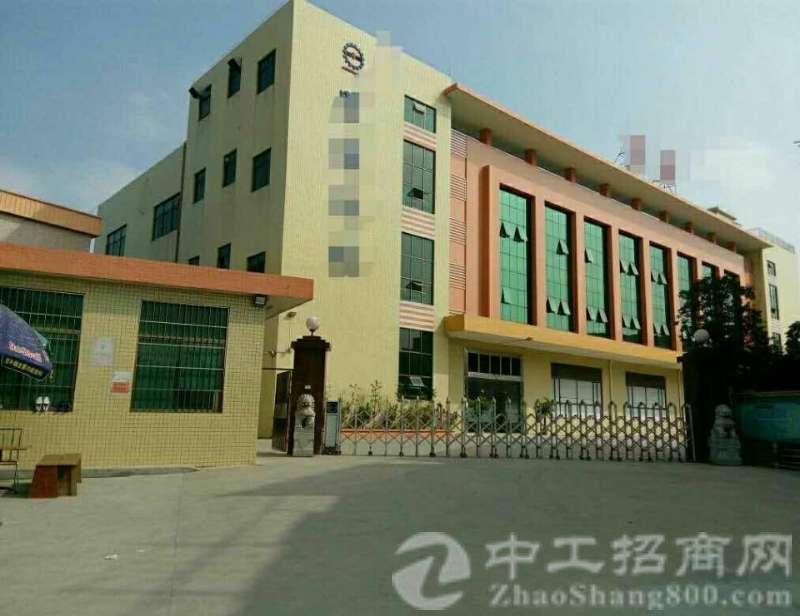 茶山镇原房东独门独院4900平单一层厂房