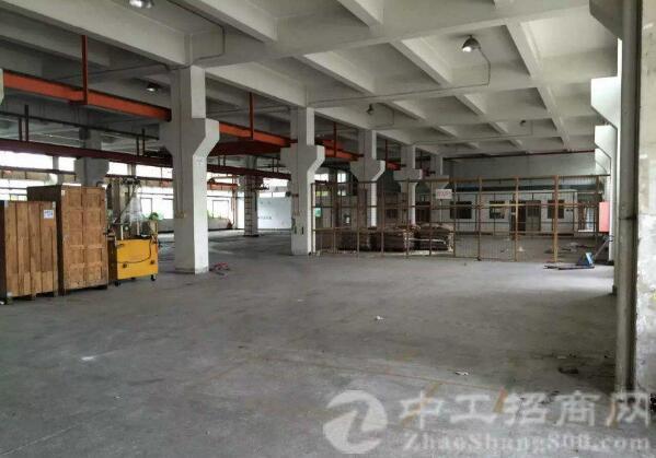 沙井新桥高速出口新出一楼3200平米带牛角厂房出租