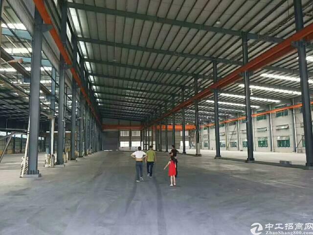 沥林新空出钢结构独门独院厂房仓库出租免费带客户看房