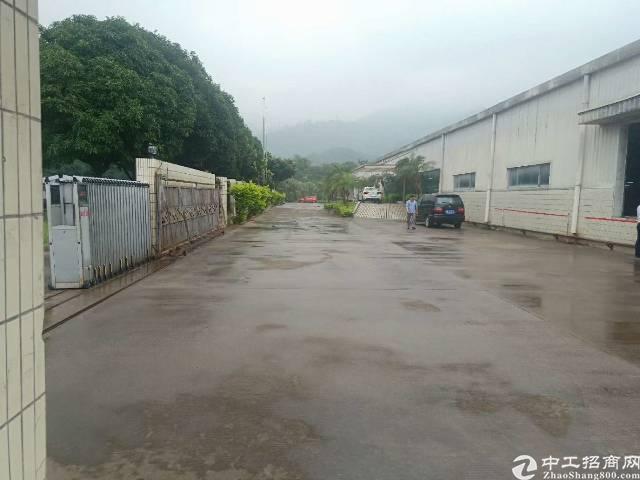 福永凤凰新出单一层钢构厂房4500平米