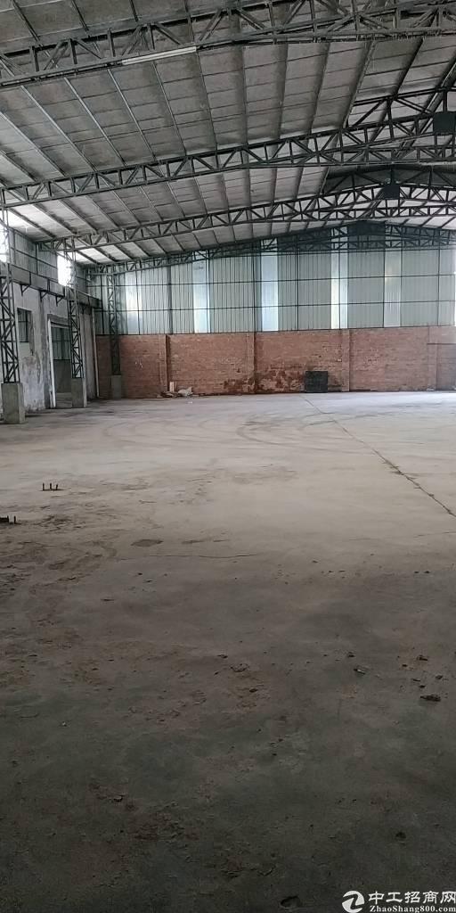 中堂最便宜单一层厂房招租方