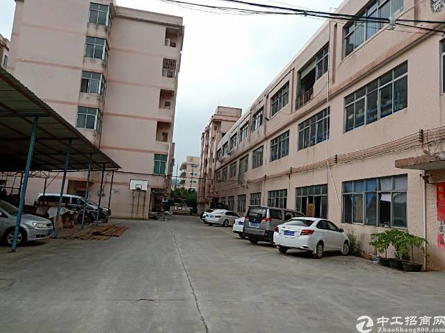 樟木头镇金河管理区标准厂房三楼1200平方出租