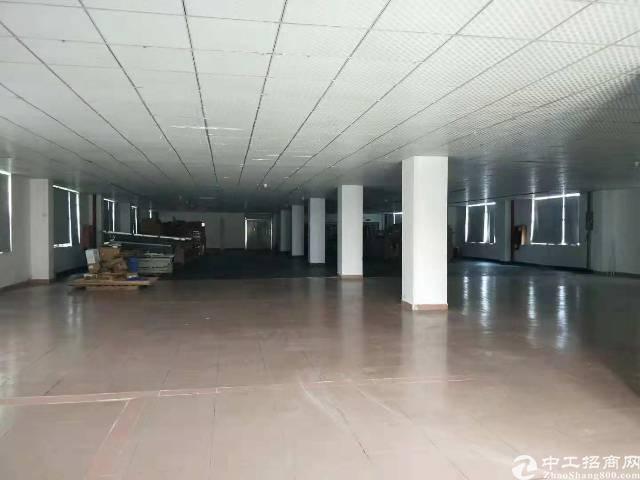 西乡鹤洲洲石路厂房500平