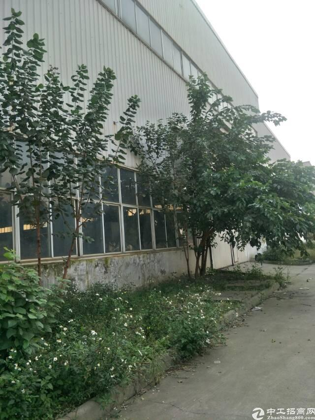 青白江10000平标准厂房出租,可分割,手续齐全-图3
