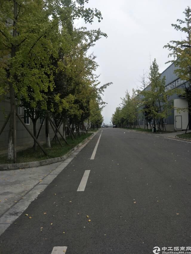 龙泉经开区2000平精装修框架厂房,无税收要求-图4