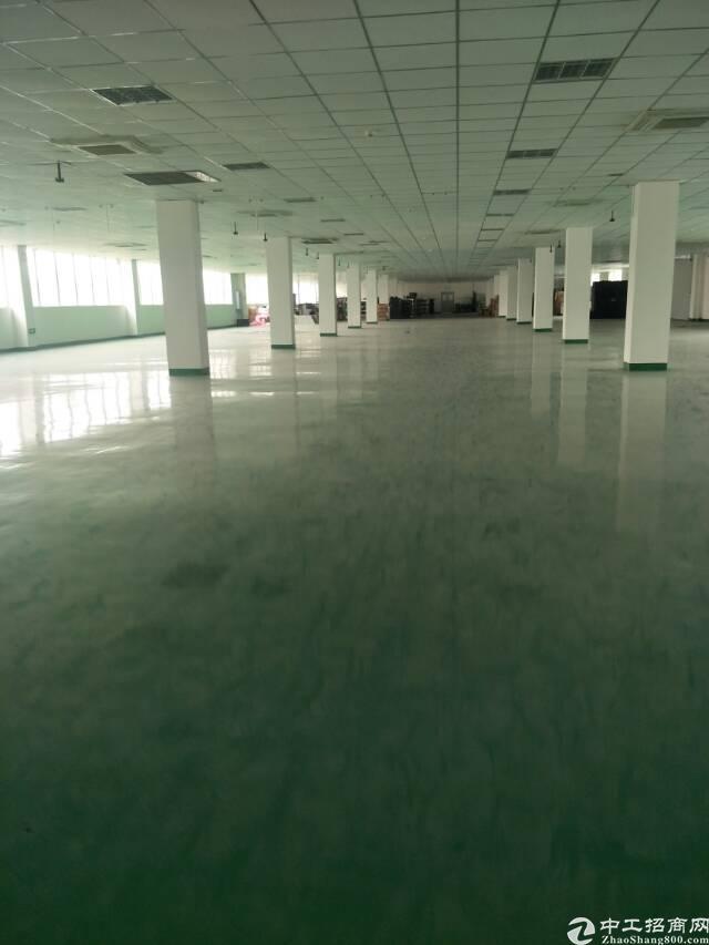 龙泉经开区2000平精装修框架厂房,无税收要求