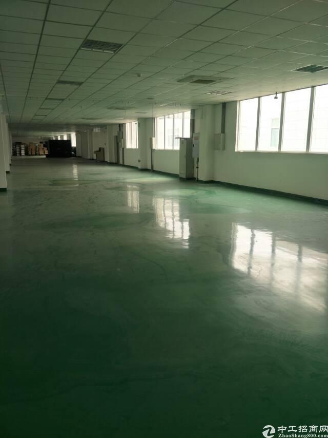 龙泉经开区2000平精装修框架厂房,无税收要求-图3