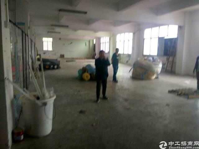 北环一楼部分带装修牛角350-1000平米标准厂房出租