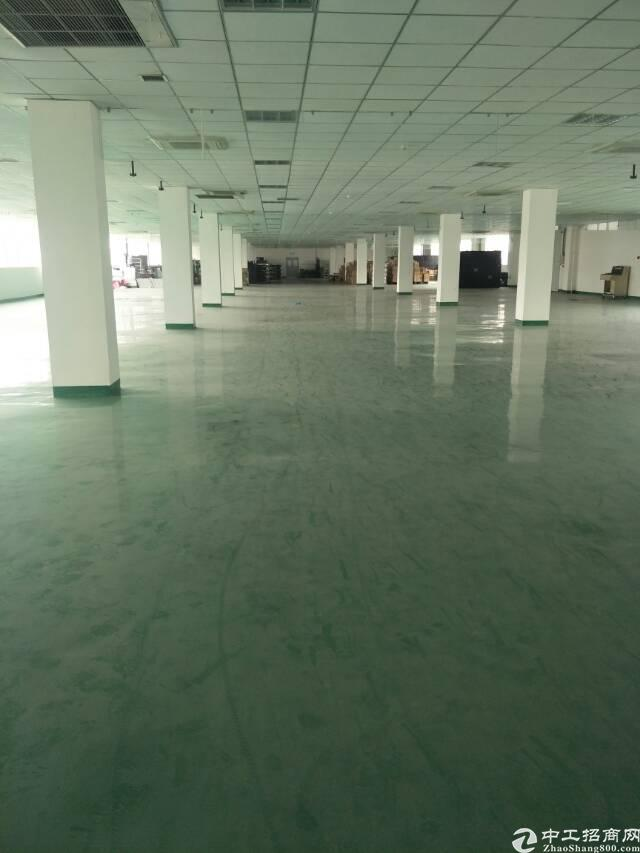 龙泉经开区2000平精装修框架厂房,无税收要求-图5
