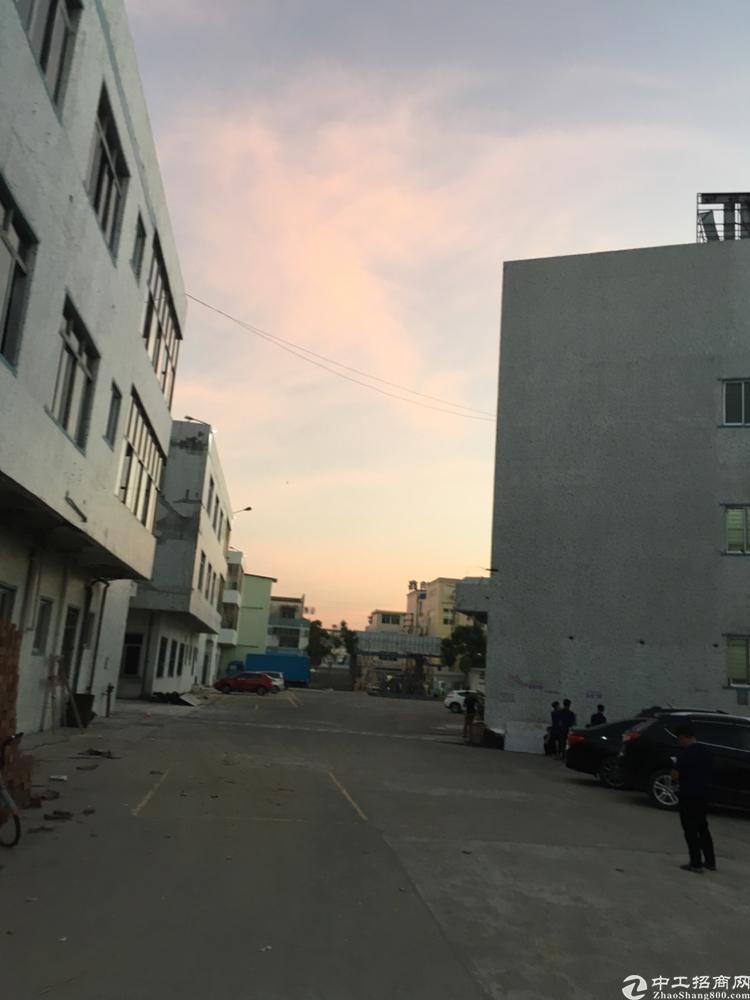 深圳红本厂房-图2