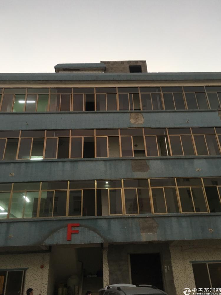 深圳红本厂房