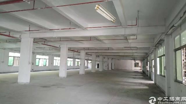 寮步新出厂房1500平独门独院带超大空地形象好,人气旺易招工