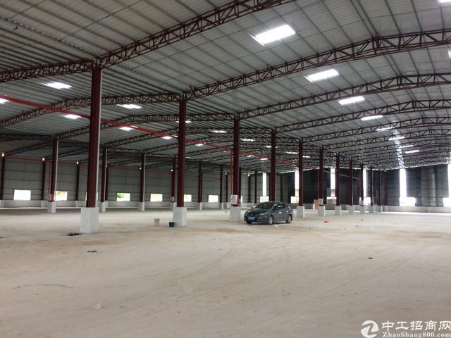 石湾新建的村委钢结构招租 便宜租