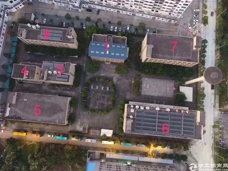 凤岗镇临深片区教学、养老红本宿舍公寓28000平方米出租