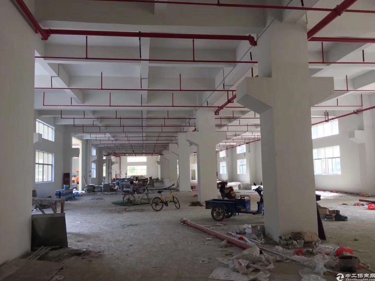 原房东新建重工业厂房-图3