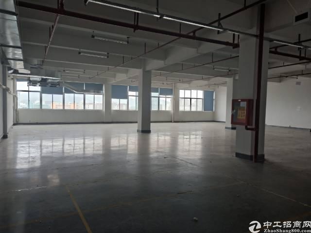 深圳石岩石龙仔大型成熟工业园-图6