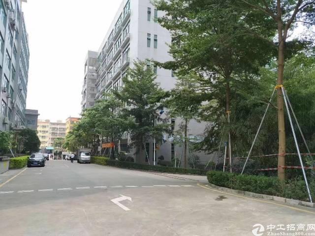 石岩水田高新园区1楼2000平方带红本厂房招租