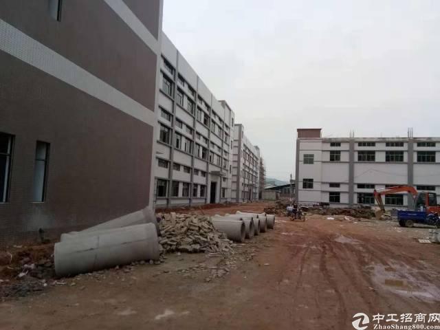 惠州小金口工业区内独院19000平标准万博app官方下载出租!
