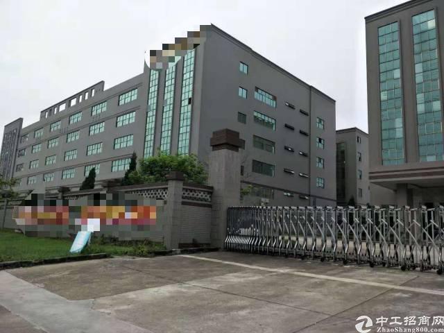 黄江镇中心分租整层5000㎡