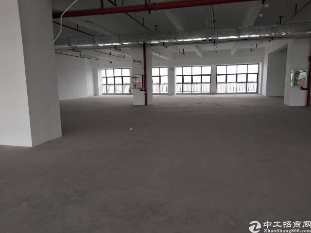 石岩石龙仔带精装修厂房1850平招租-图4