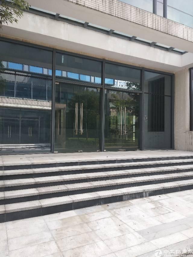 50年红本高级写字楼约15000平方米诚意出售