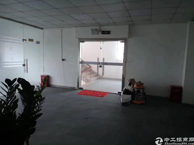 龙胜地铁站附近新出带豪华装修无转让费价格便宜可分租