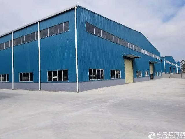 仲恺成熟工业区独栋10米高钢构3000平方