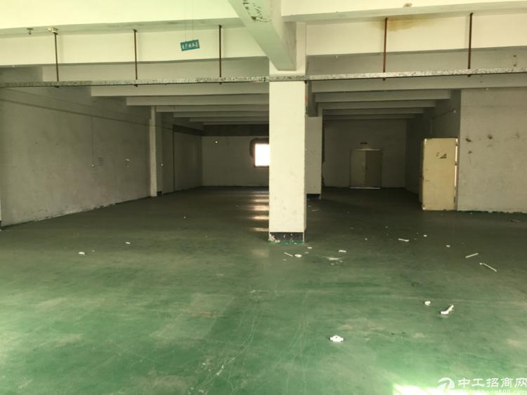 横岗荷坳金源路550平米厂房出租